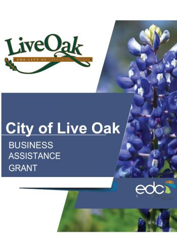 Live Oak Business Assistance Grant - COVID-19